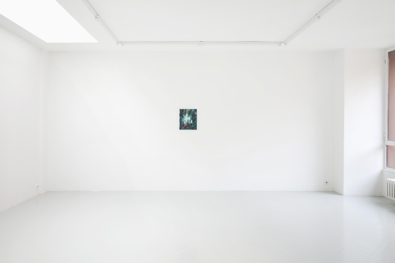 5 Freya Douglas-Morris Studiolo 11 2014 Spazio Cabinet Milan - Courtesy Spazio Cabinet Milan - Photo Filippo Armellin