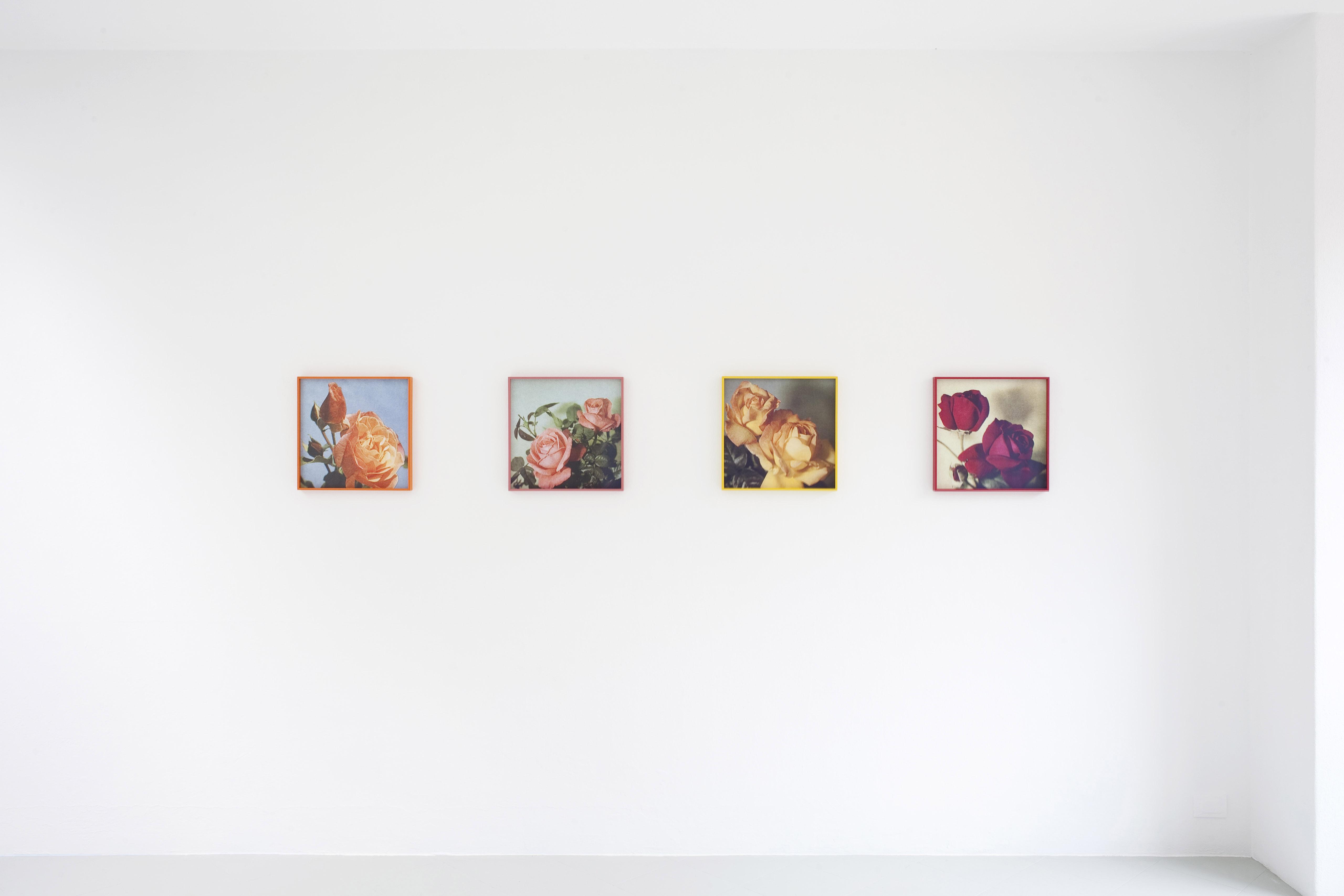 6 - Talisa Lallai Loveliness Extreme2016 Inkjet Print each 41x41 cm - Courtesy Studiolo Milan
